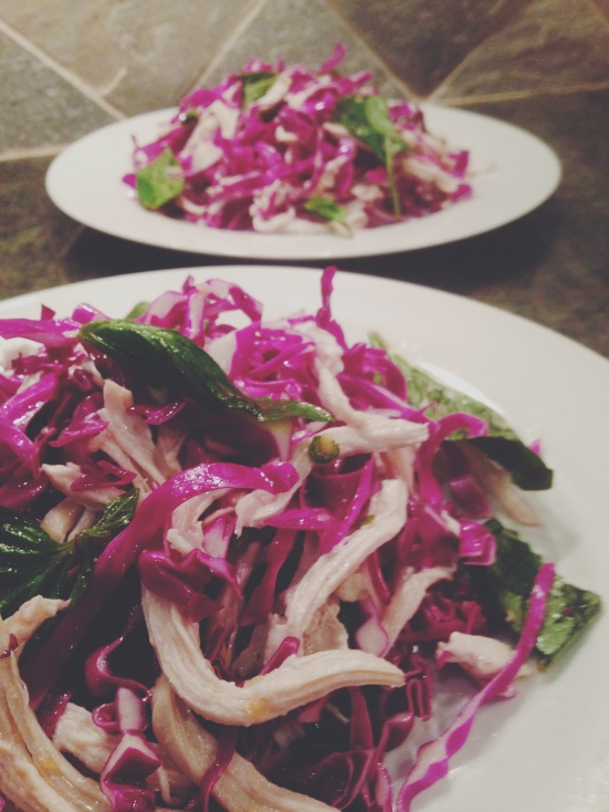 Red Cabbage Salad with Basil and Shredded Chicken Breast with Asian Inspired Dressing